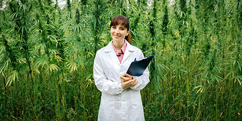 confident-doctor-posing-in-a-hemp-field