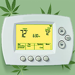 set-the-best-climate-in-your-grow-room