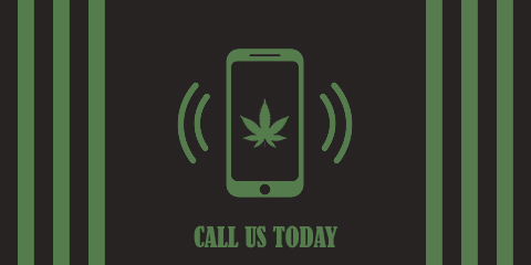 call-weed-seeds-today