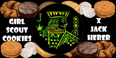 girl-scout-cookies-jack-herer