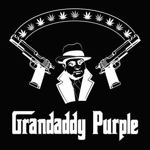 grandaddy-purple-photo-fem