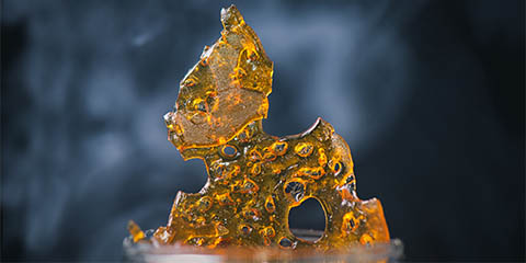 make-concentrates-from-high-thc-bud