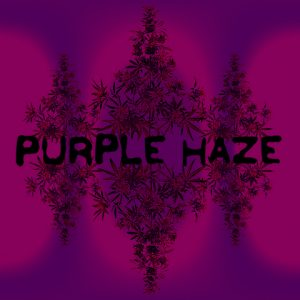 purple-haze-photo-fem