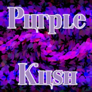 purple-kush-photo-fem