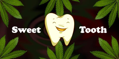 sweet-tooth-seeds