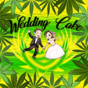 wedding-cake-photo-fem
