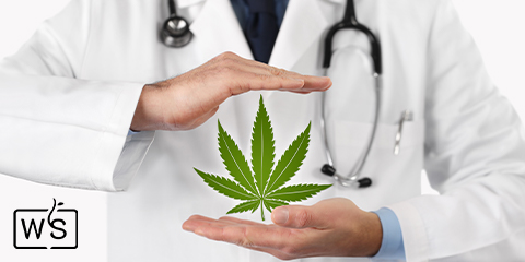 medicinal-applications-for-indica-flowers-grown-from-seed