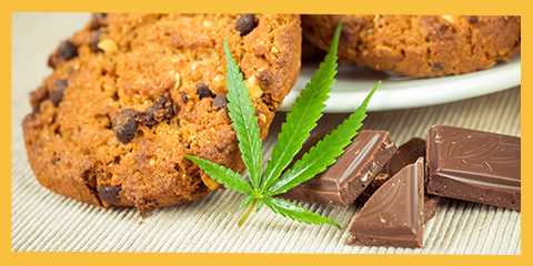 making-edibles-with-your-sativa-seed-strains