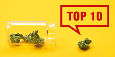 our-top-10-bestselling-sativa-strains