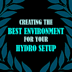 creating-the-best-environment-for-your-hydro-setup