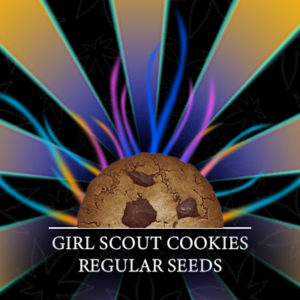 girl-scout-cookies-photo-reg